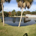 Shipwreck Harbor Pond treated monthly