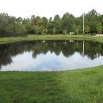 Pond treated bi-weekly for algae blooms
